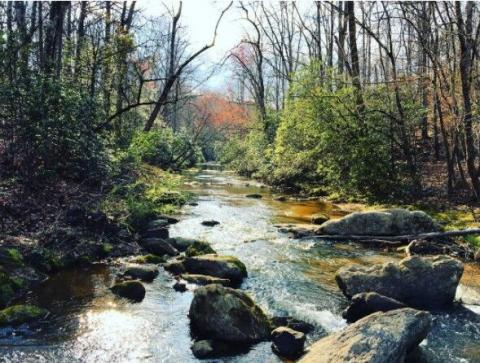 Georgia's Top 7 Instagrammable Locations